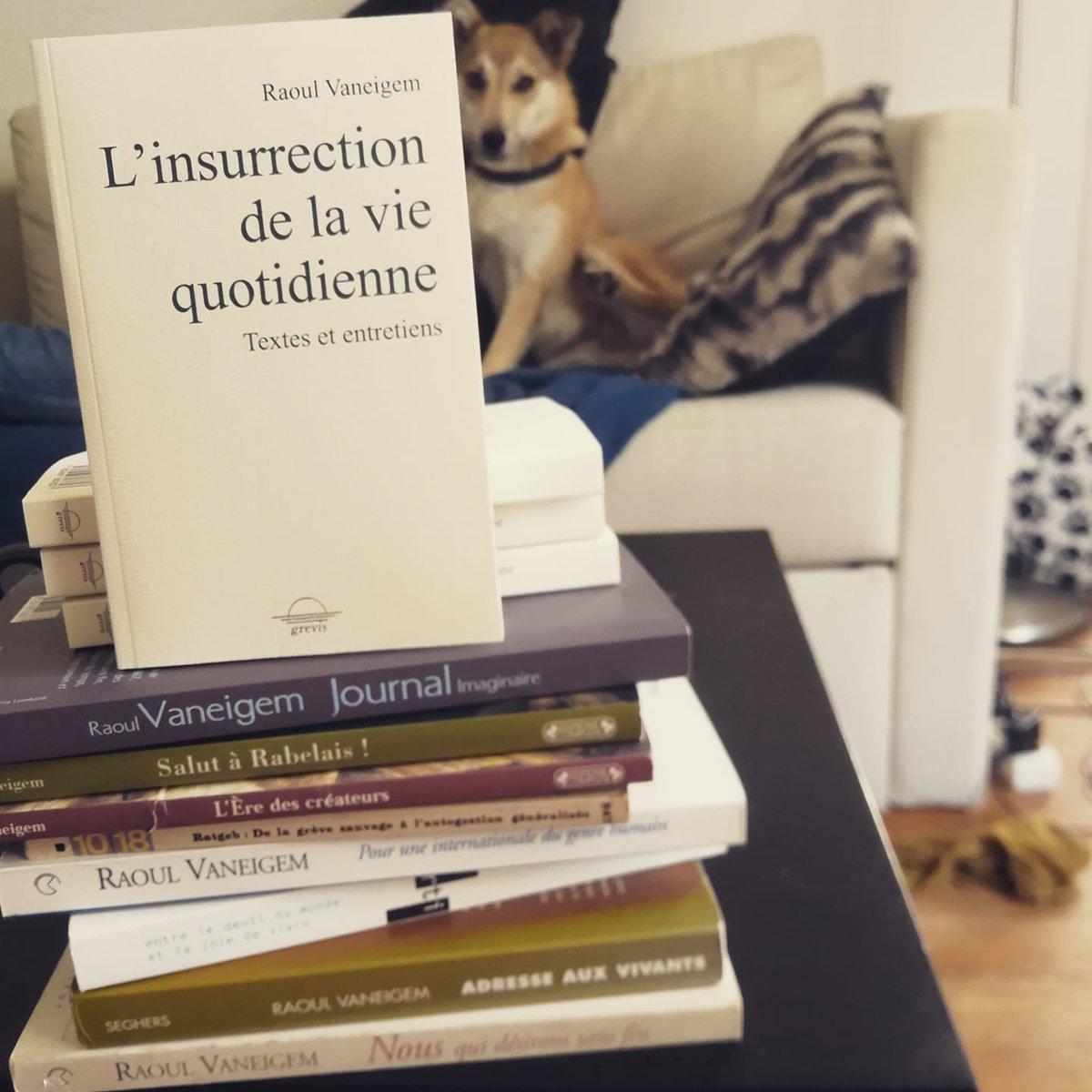 Raoul Vaneigem, L'insurrection de la vie quotidienne