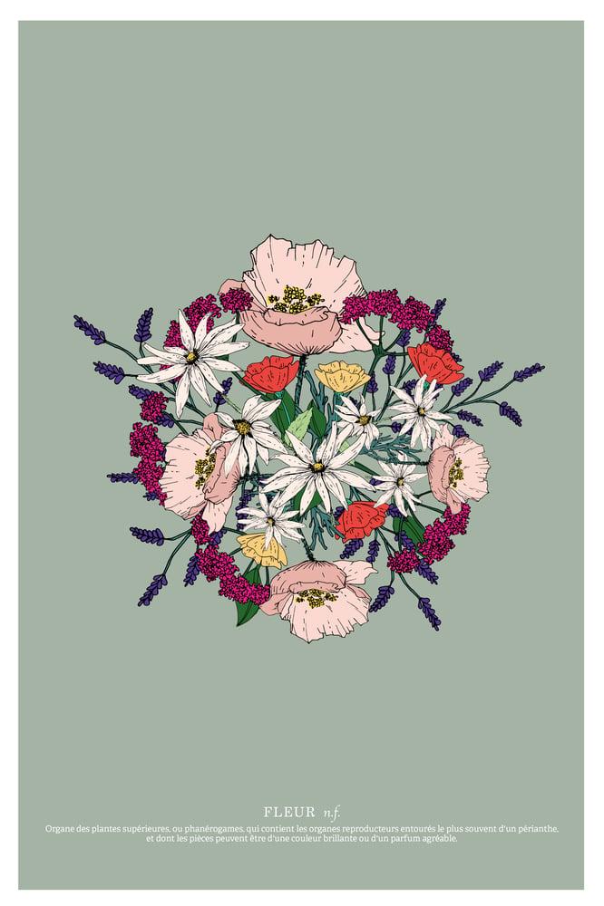 Image of Herbier