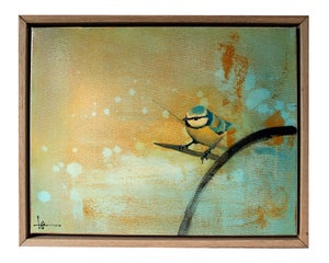 "Image of Original Framed Canvas - Blue Tit on Branch - 14"" x 11"""