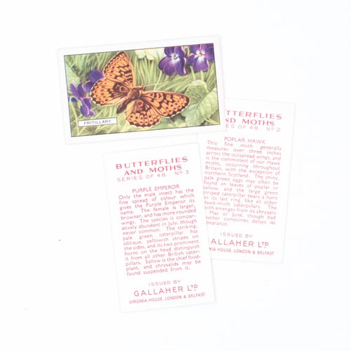 Image of Butterflies & Moths Cigarette Cards - Set of 8
