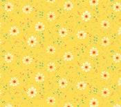 Image of Shades of Summer Yellow Daisy