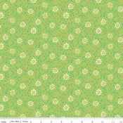 Image of Shades of Summer Green Daisy