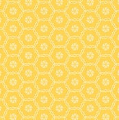 Image of Shades of Summer Yellow Hexis