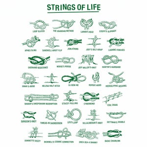 Image of Strings Of Life