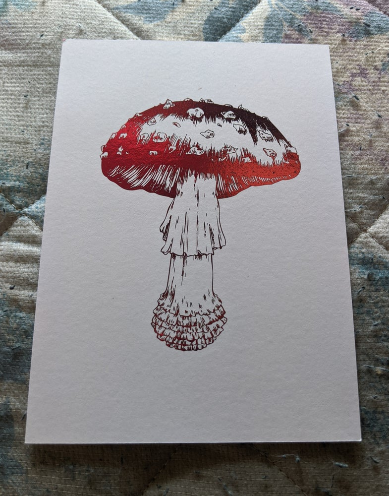Image of FLY AGARIC PRINT