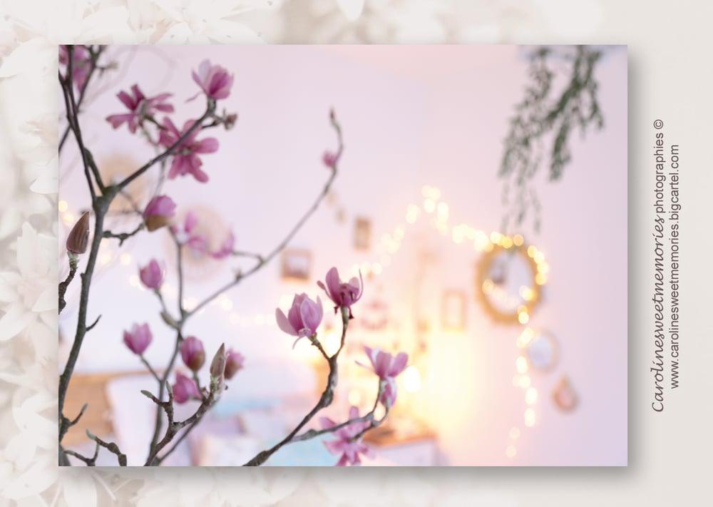 Image of Décor branche de magnolia | carte postale