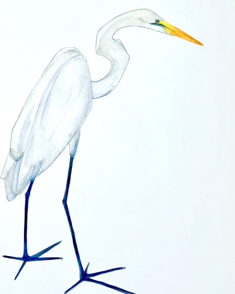 Image of The Heron