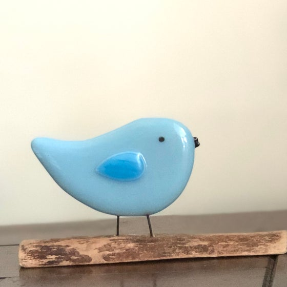 Image of Birdie on a log