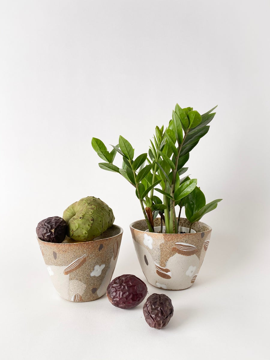 Image of Desert Flowers - Planter / Fruit Bowl
