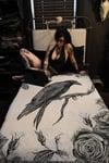 A MURDER OF CROWS: Rosalva Crow