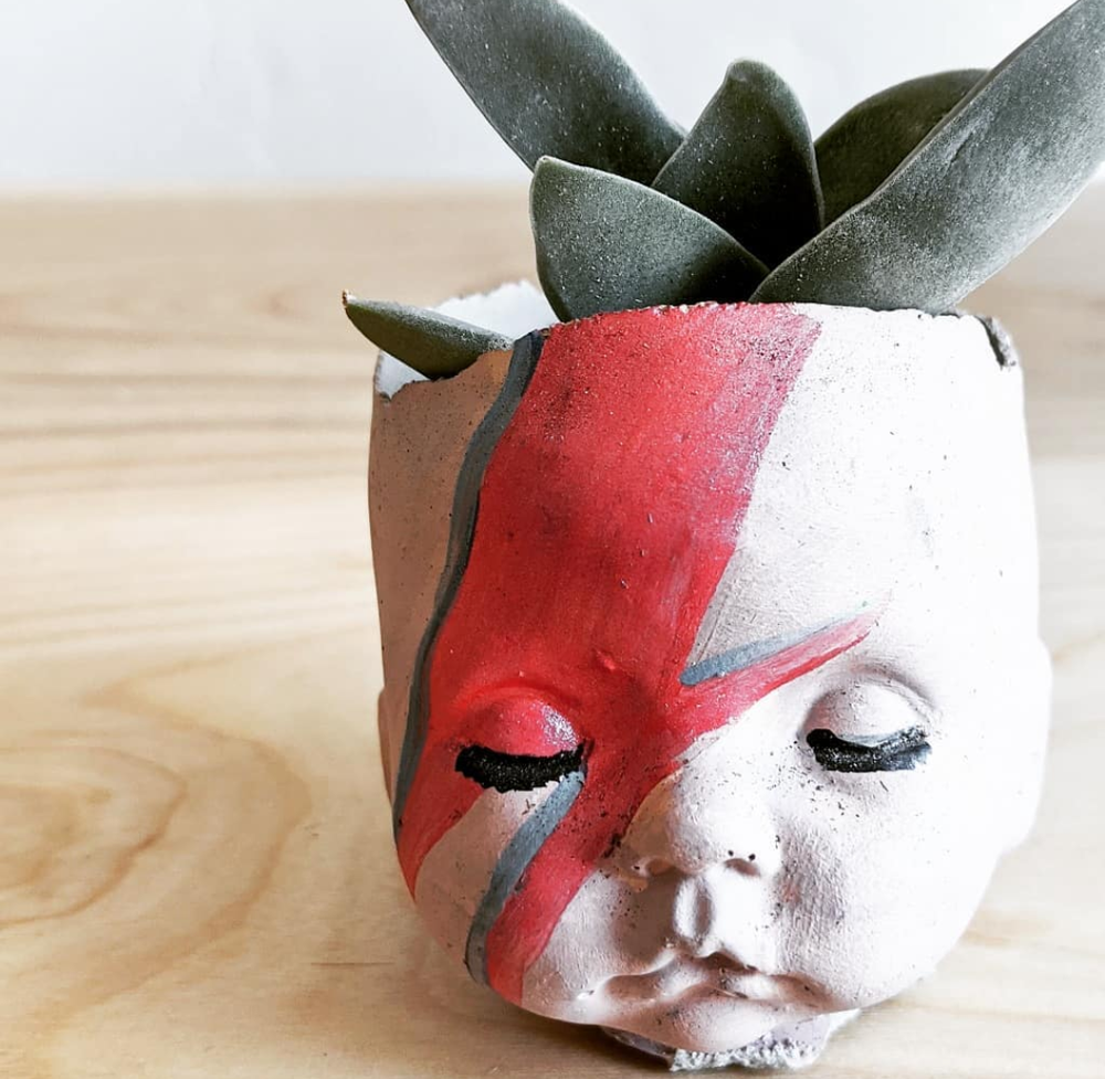 Baby Bowie planter