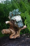 MOSSY - Deer Skull Decor w. Lights (FREE SHIPPING)