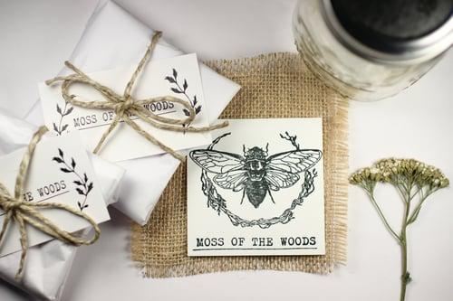 Image of Wormwood (Artemisia absinthium) - Pressed Earrings #1