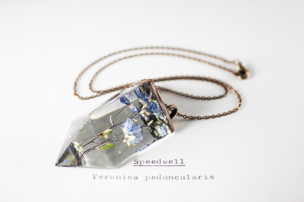Image of Speedwell (Veronica peduncularis) - Small Copper Prism Necklace #3