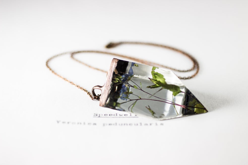 Image of Speedwell (Veronica peduncularis) - Small Copper Prism Necklace #5