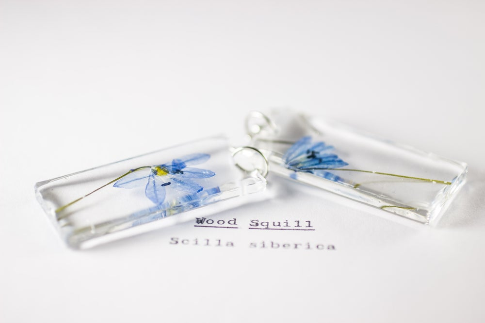 Image of Wood Squill (Scilla siberica) - Pressed Earrings #3