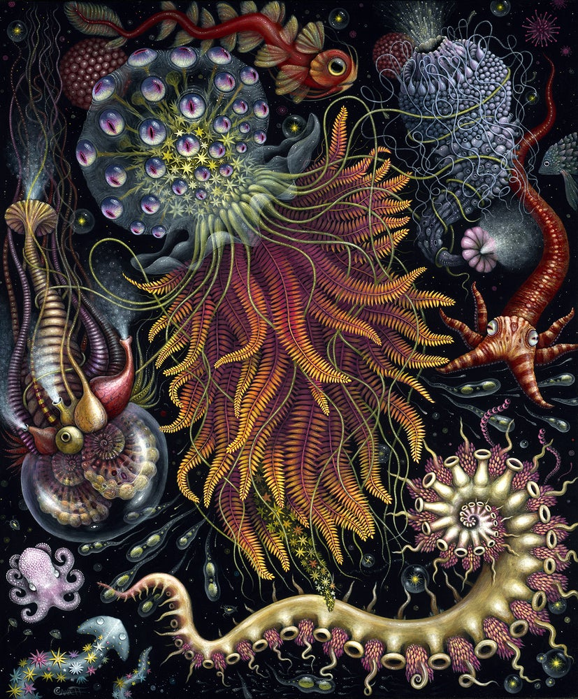 Image of HYDROZOA • SIGNED OPEN EDITION