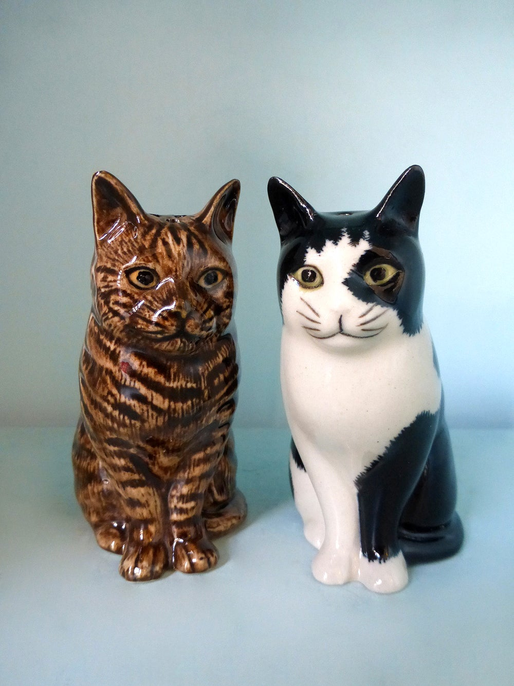 Image of Tabby / Black & White Cat Salt and Pepper