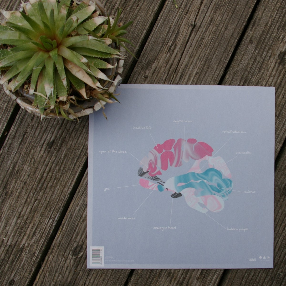ZULU - Analogue Heart / Digital Brain - LP Vinyl