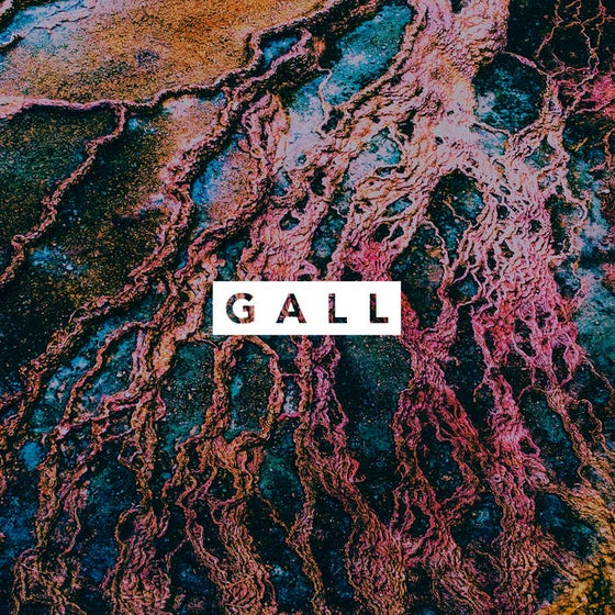 Image of Gall - 17:21 Min LP