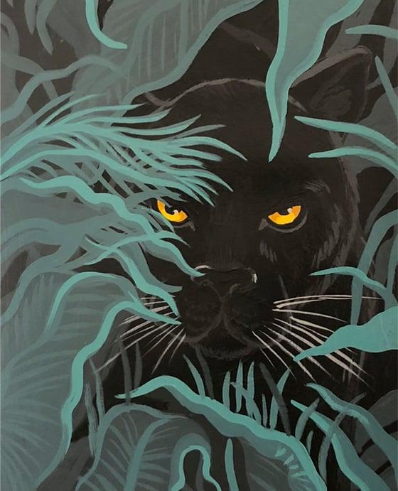 Image of Pantera negra