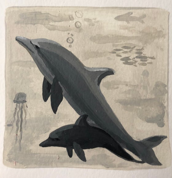 Image of Delfines