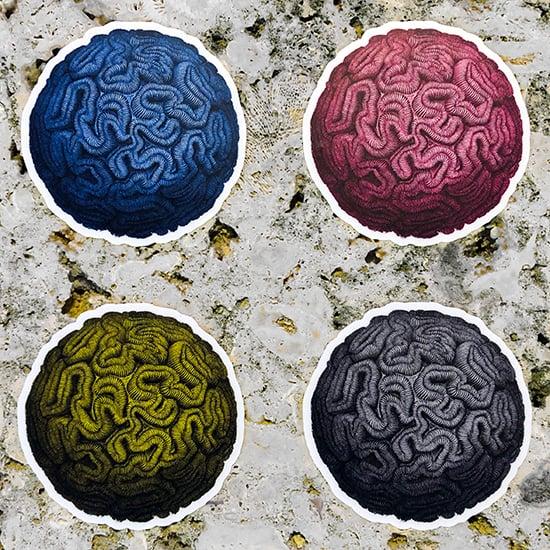 Image of Haeckel Brain Stone CMYK Sticker Set