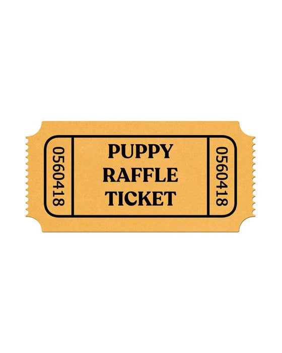 Image of Charity Raffle Ticket