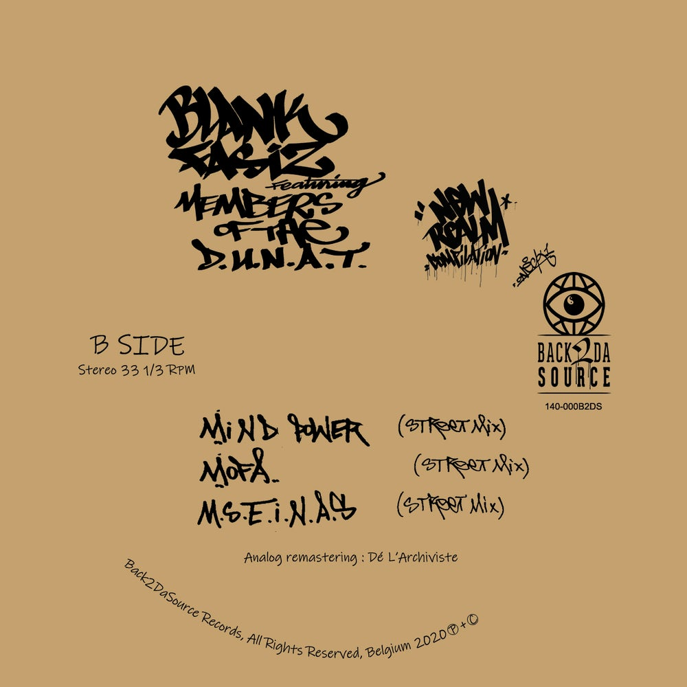 Image of Blank Fasiz Featuring The DUNAT crew - New Realm Compilation (2xLP) (SOLD OUT)