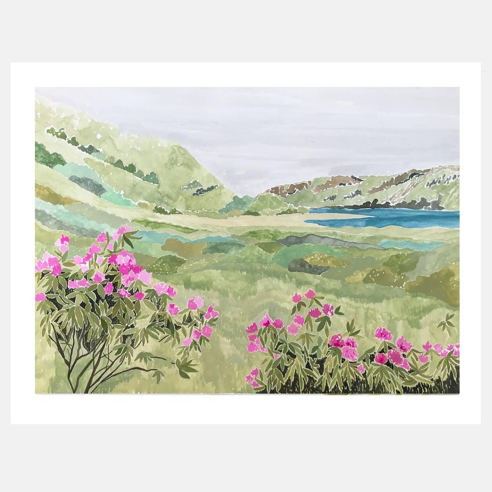 Image of Isle of Mull