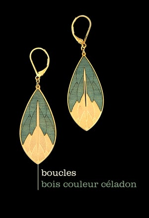Image of PHYSALIS boucles bois