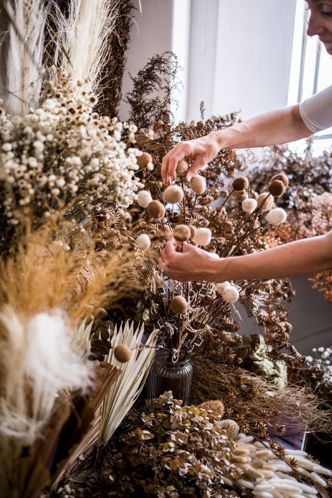 Image of Winter Wreath making with Kirsten from Blume
