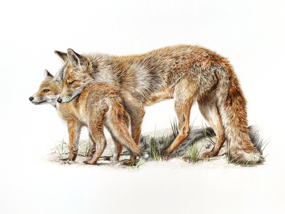 Image of 'Little One' Limited Edition Mounted Print