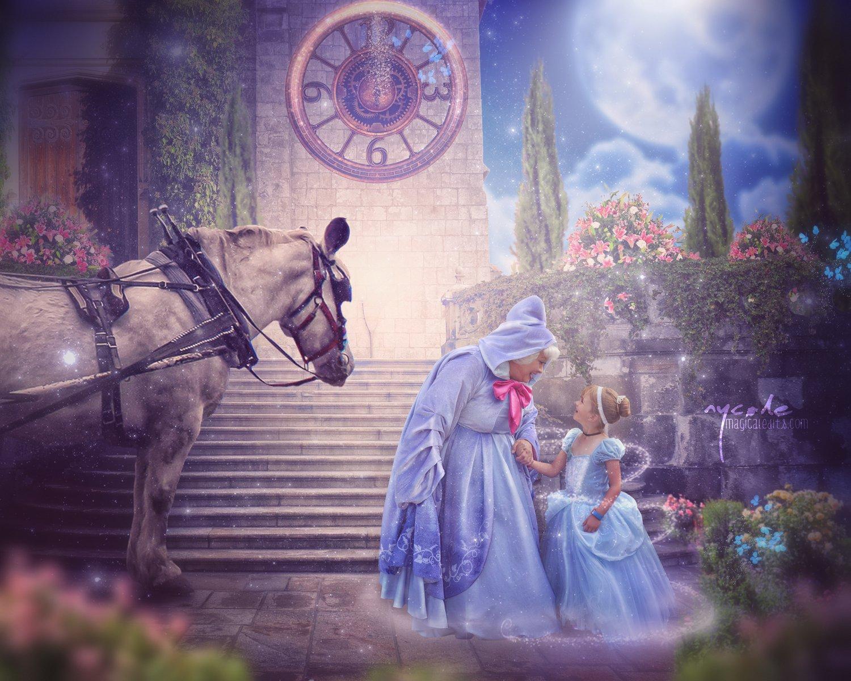 Image of Midnight Princess