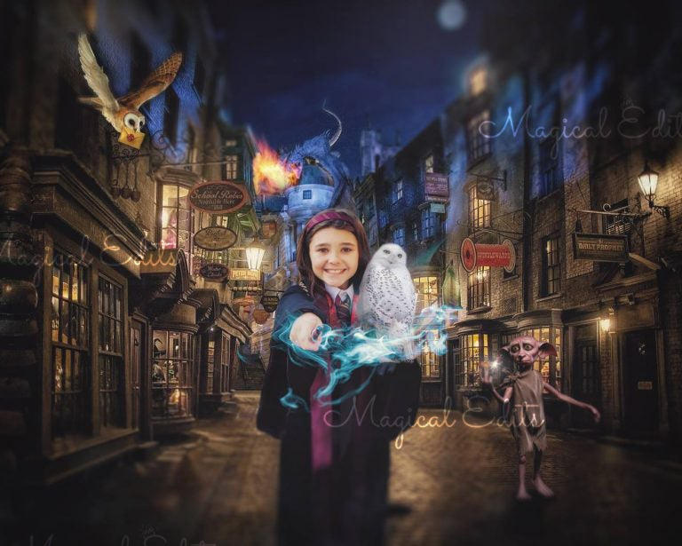 Image of Diagon Alley Edit