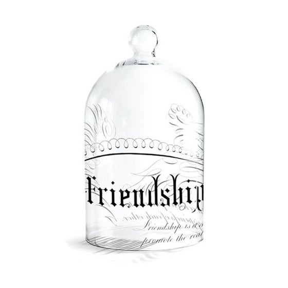Image of Fringe Studio Large Glass Cloche ~ Friendship Design