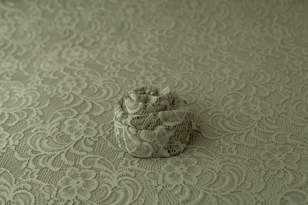 Image of Gala Lace in Pistachio