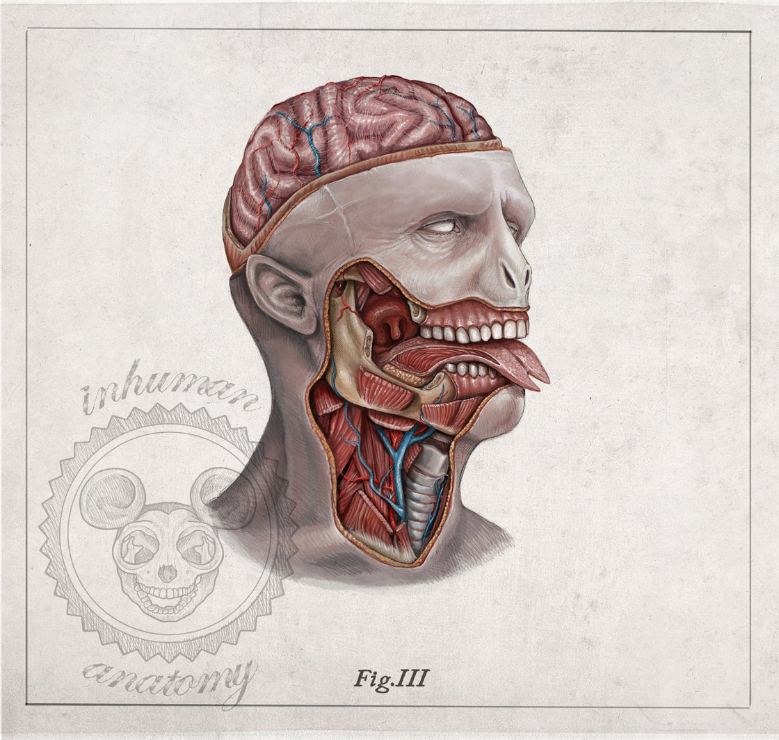Image of VOLDEMORT-  head anatomy (limited ed. of 50 Giclèe wide print on fine art canvas)