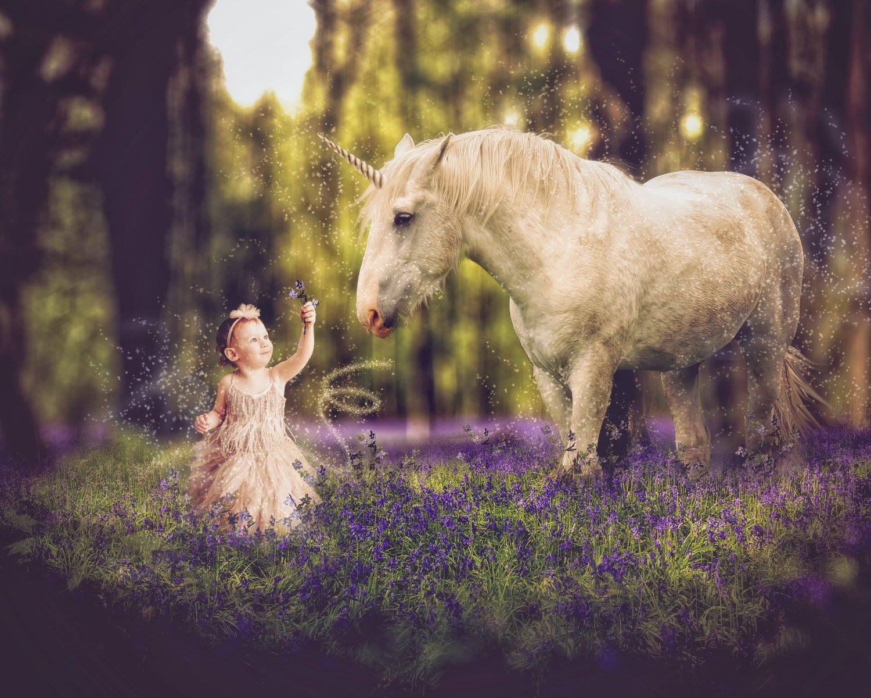 Image of Unicorn Field Edit