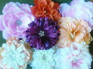Image of Flower Clips