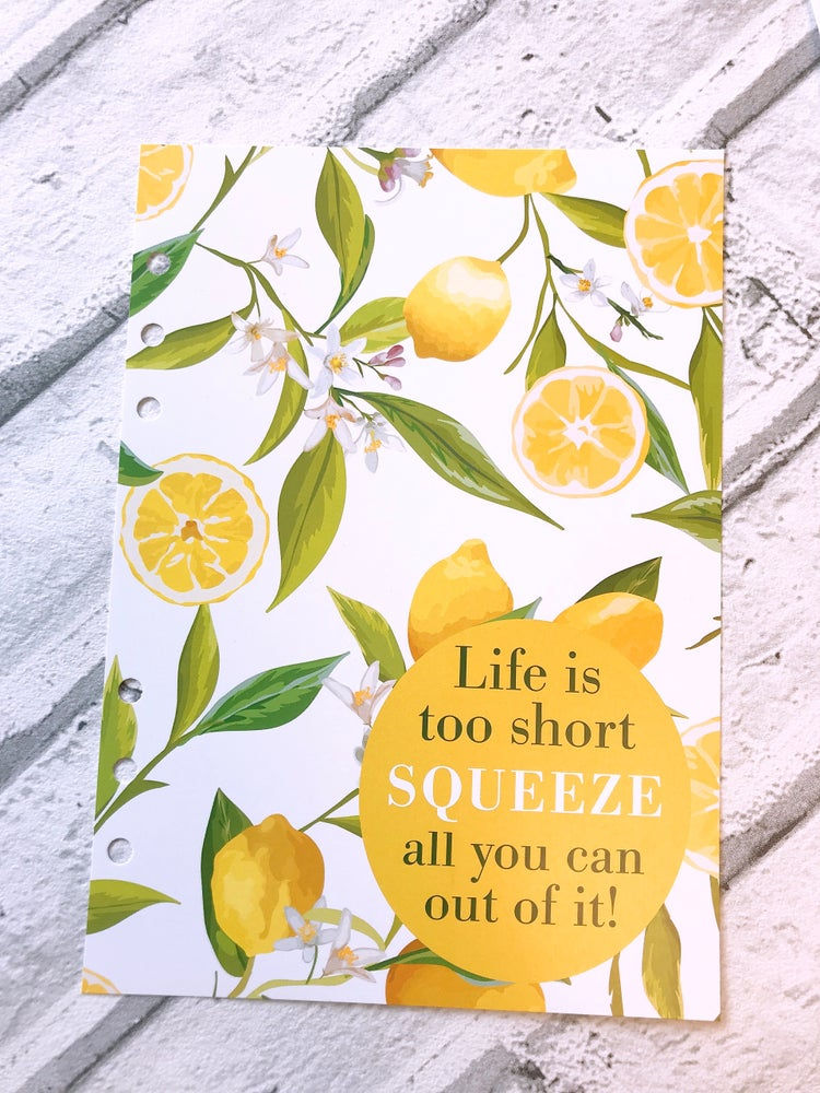 Image of A5 FOOD DIARY ORGANISER INSERT LIFE IS SHORT