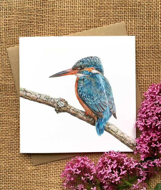 Image of 'Kingfisher' Greetings Card