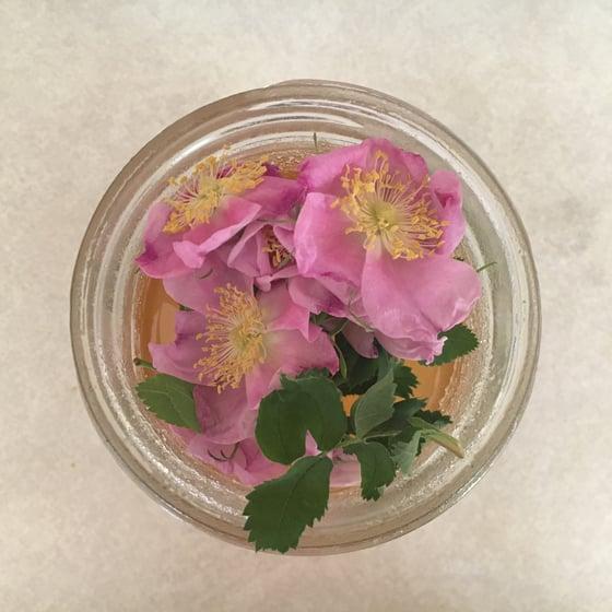Image of Rose Elixir
