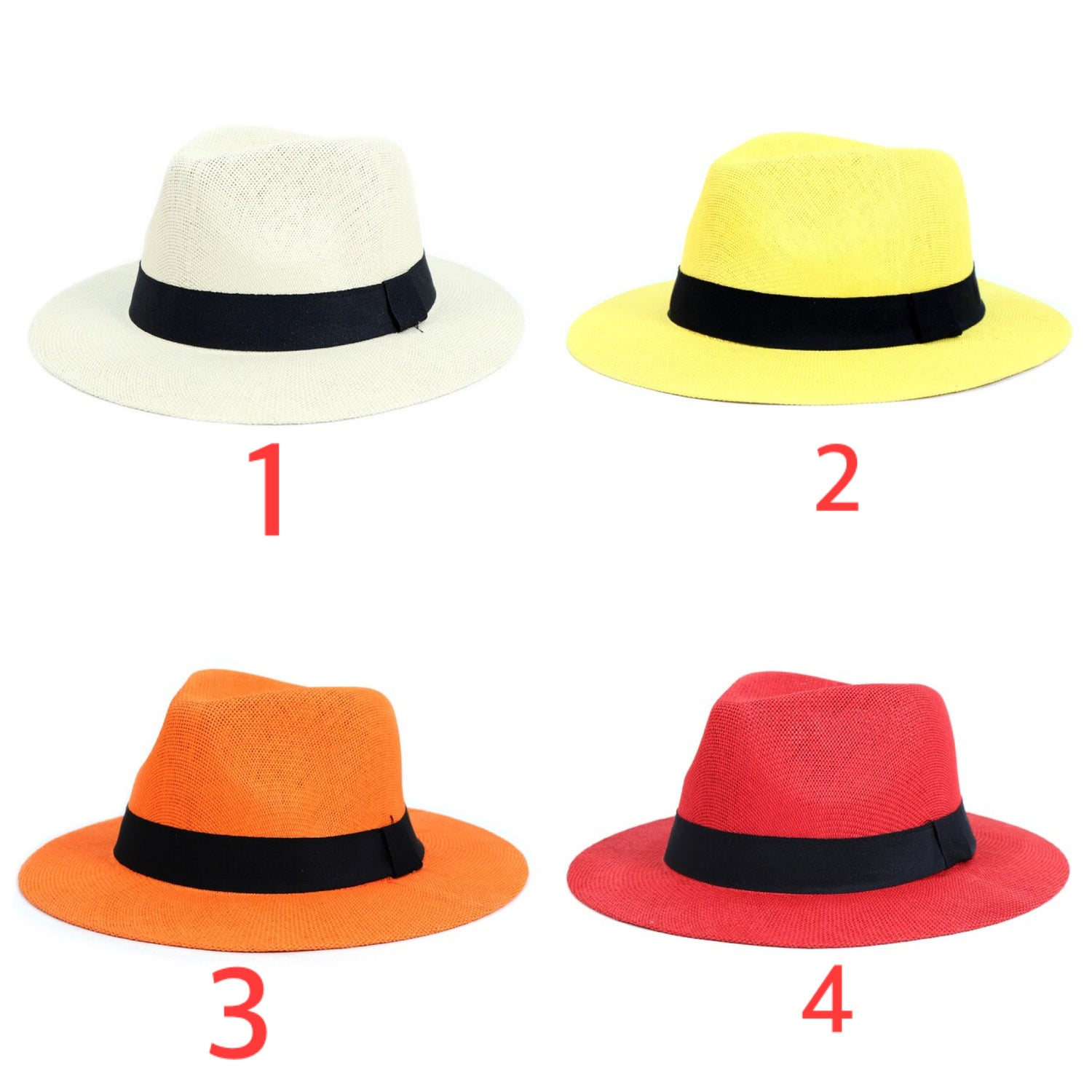 Image of Wide Brim Fedora Hats