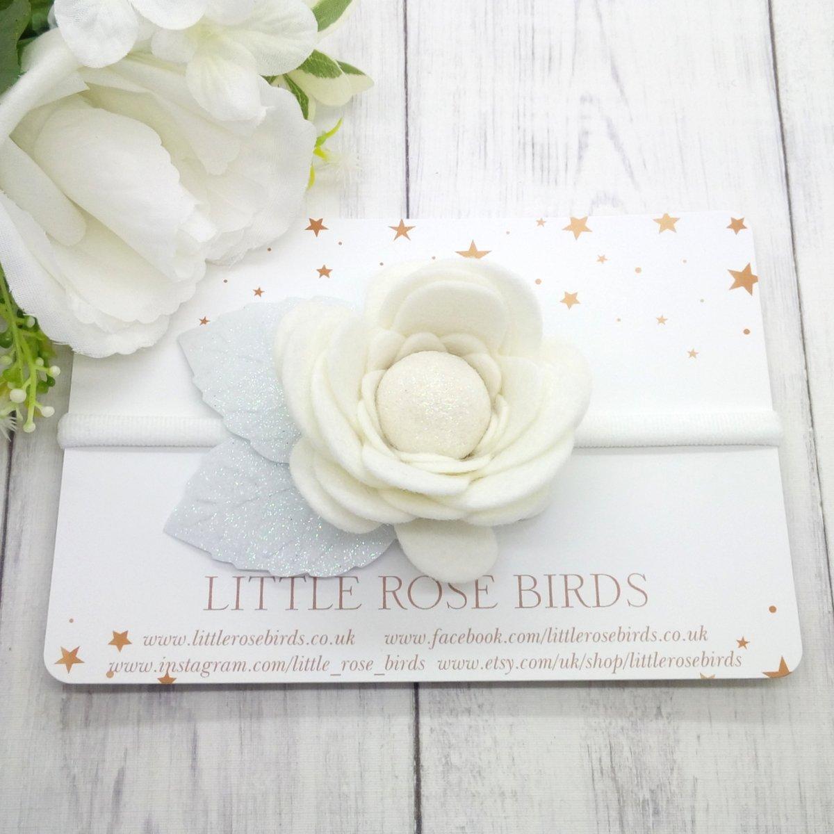 Image of White Flower Bloom
