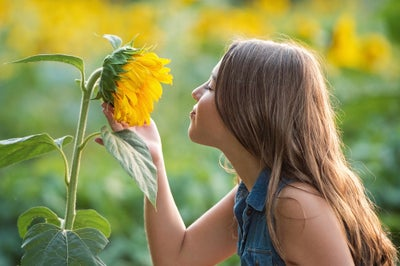 Image of Sunflower Mini-Session - July 3rd - Milton, GA