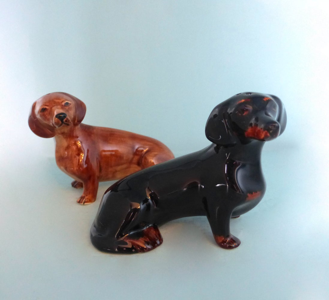 Image of Dachshund Salt and Pepper
