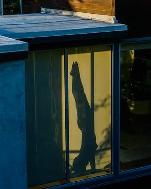 Image of Upside Down Quarantine