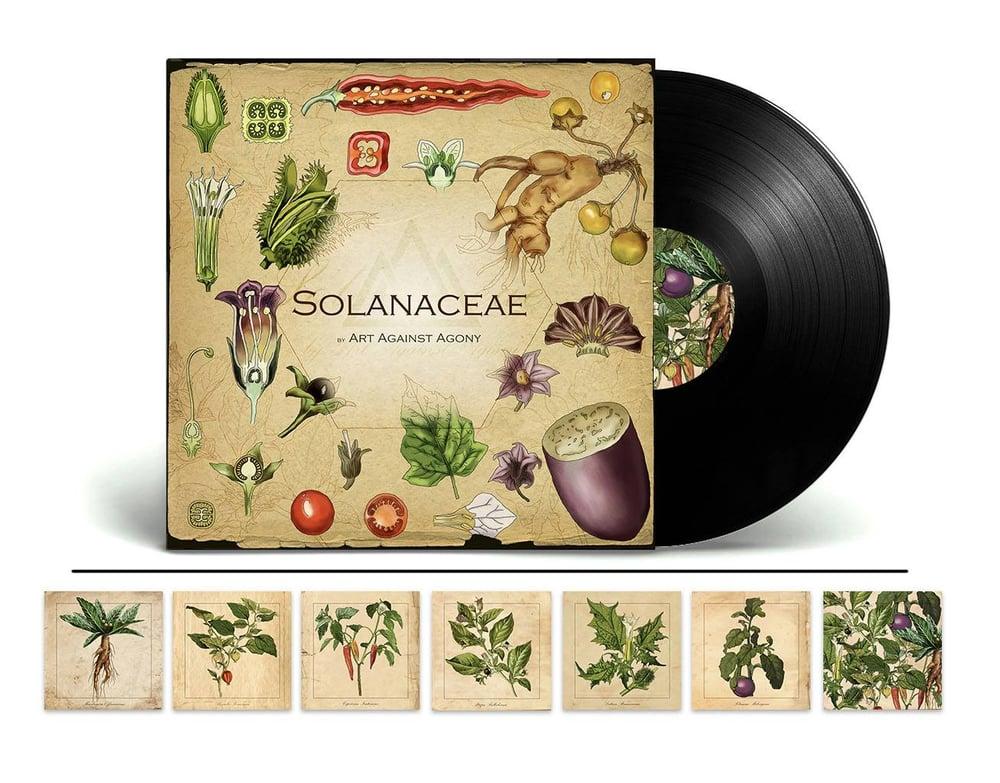 Image of Solanaceae - VINYL