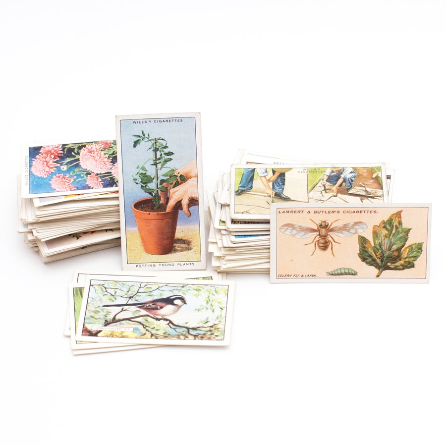Image of Garden Cigarette Card Variety Pack - Set of 10